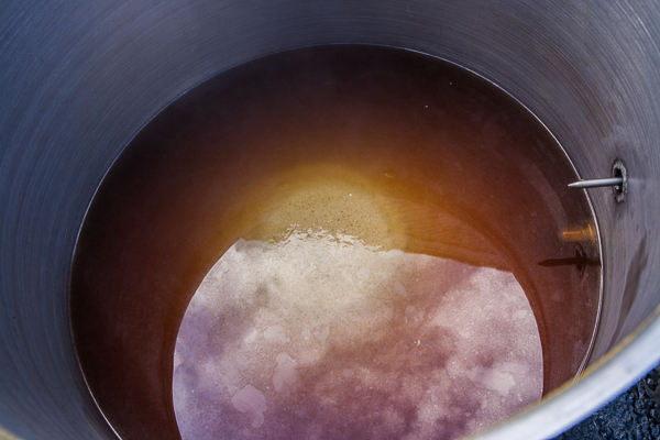 Trub cone in the boil kettle. To the left is the stainless steel elbow that is attached to the spigot from the inside.